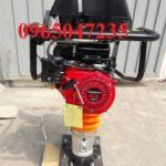 Giới thiệu các loại máy đầm đất chạy xăng trên thị trường