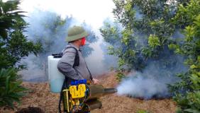 mua máy phun thuốc trừ sâu dạng khói