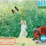 Giá bán Máy cắt cỏ 2 thì Tomikama mới nhất năm 2020