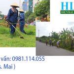 Cập nhật giá Máy cắt cỏ cầm tay Tomikama chính hãng mới nhất