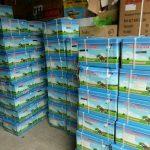 Phân phối máy cắt cỏ cầm tay HLC 330 chính hãng, giá rẻ