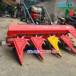 Máy gặt lúa xếp dãy rải hàng An Giang mini giá rẻ tại Hà Nội